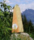 Bregenzerwälder Bergkäse würzig