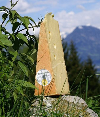 Bergkaese mild Alpenlandschaft