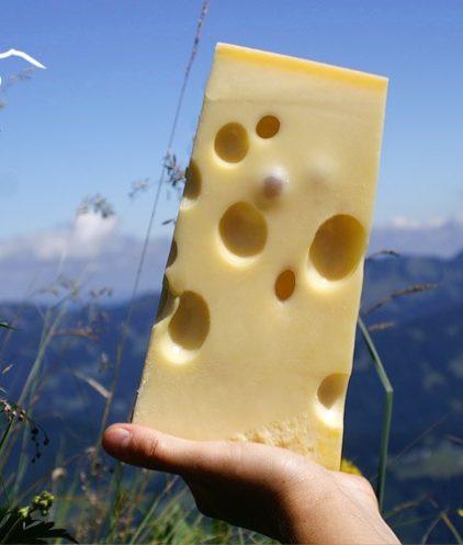 Emmentaler Käse Alpen