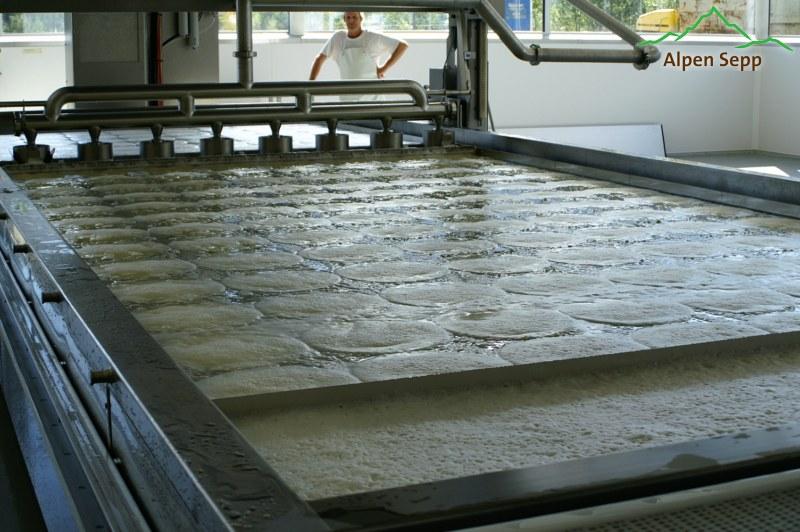 Käseformen fertig gefüllt