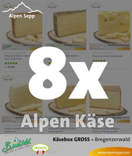 GROSSE Käsebox mit 8 Stück Alpen Käse vom Alpen Sepp