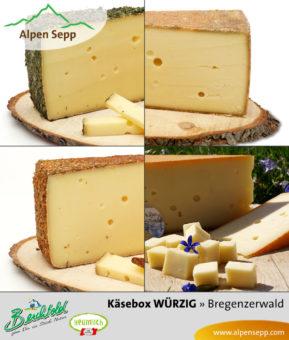 WÜRZIGE Käsebox vom Alpen Sepp