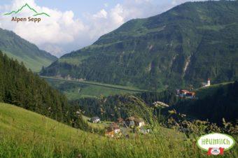 Heumilch Alpenwiese