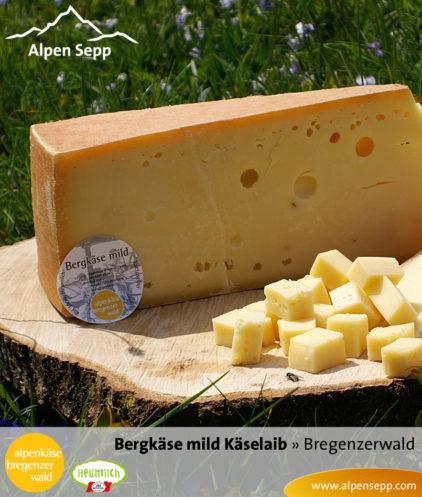 Bregenzerwälder Bergkäse mild, Sennerei Alpenkäse Bregenzerwald, Käselaib