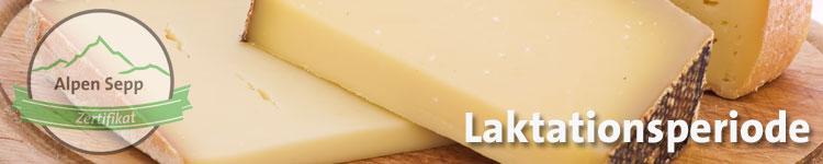 Laktationsperiode im Käse Wiki vom Alpen Sepp