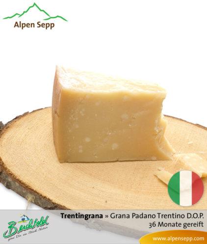 Käse Trentingrana – Grana Padano Trentino D.O.P. – 36 Monate gereift. Ähnlich Parmesan.