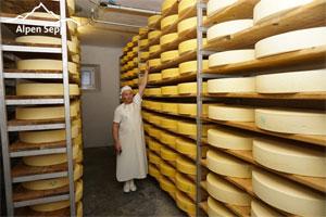 Reifekeller und Käselager vom Alpen Sepp