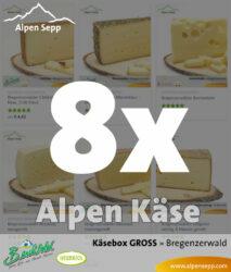 Große Käsebox - 8 Käsesorten